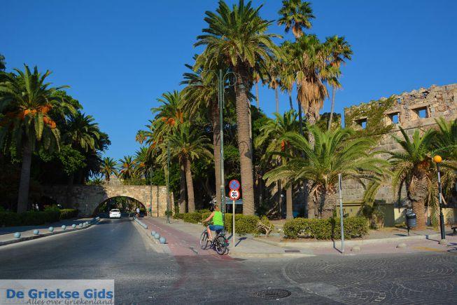 Kos stad fietsen en palmbomen